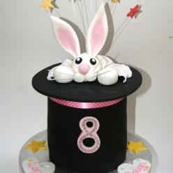 Magician's Bunny