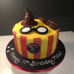 Striped Harry Potter Cake