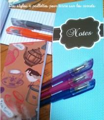 carnet stylos
