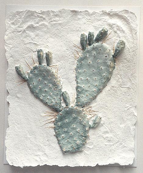 Cactus_01