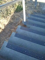 Steps on a nearby school playground, surrounded by dried grass at end of Summer