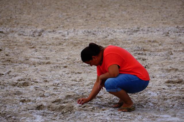 Intéressant le sel au sol?