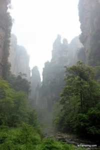 """Lovers from afar"" in ZhangJiaJie"