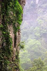Avatar scenery in ZhangJiaJie