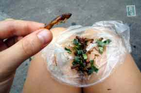 A bag of mixed bugs and worms. Price: 65 Baht= $2