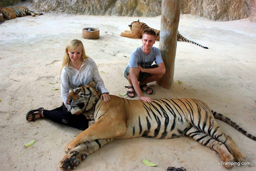 Photo with a tiger