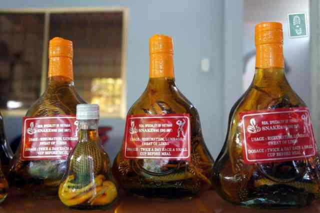 Rice wine with snake and scorpion