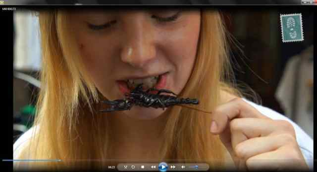Agness eating scorpion (we have it on tape)