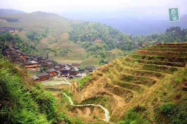 Longsheng's Rice Terraces