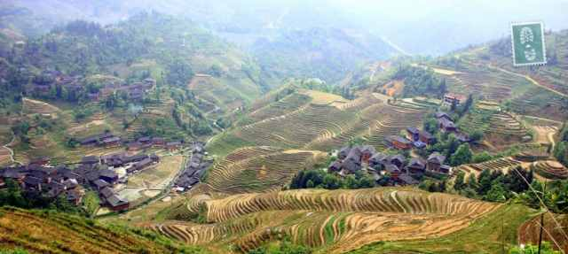 The view worth our sweat when hiking - Longji Terraced Fields.