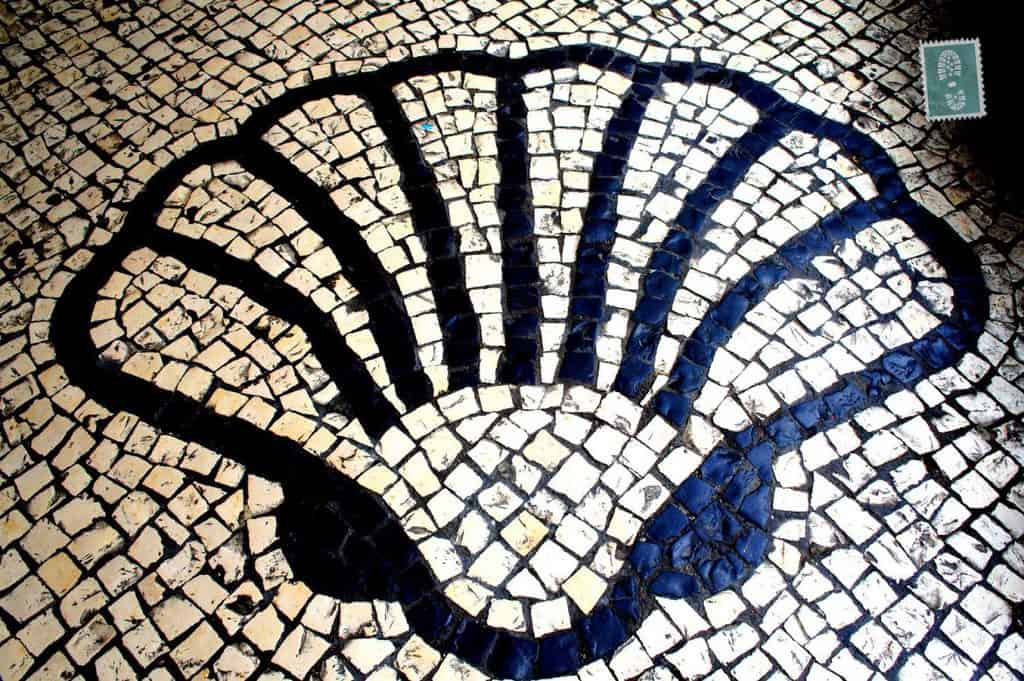 Portuguese style pavement in Macau- Seashell