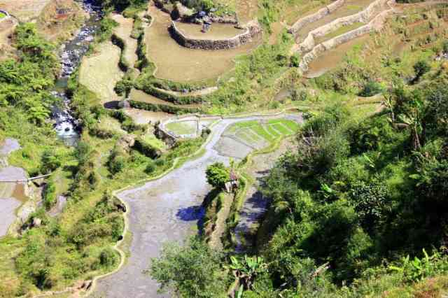 Rice Terraces in Banaue