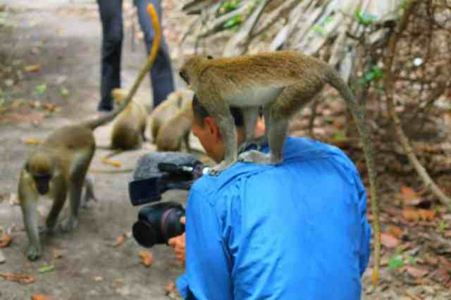 Fracis Tapon and a monkey on his shoulder