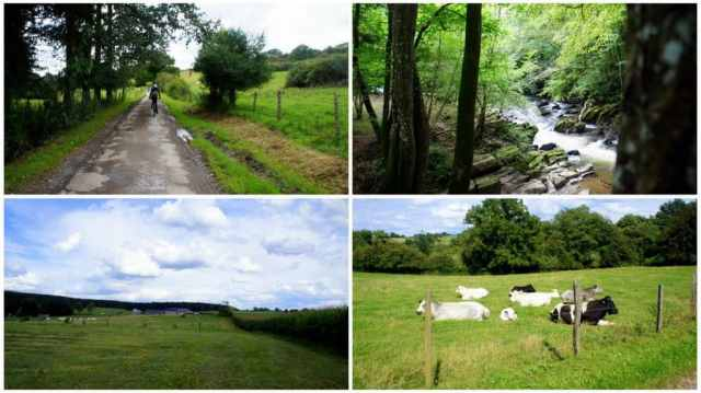 Green Ardennes