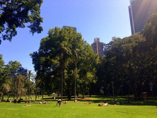 Sunbaking in Hyde Park