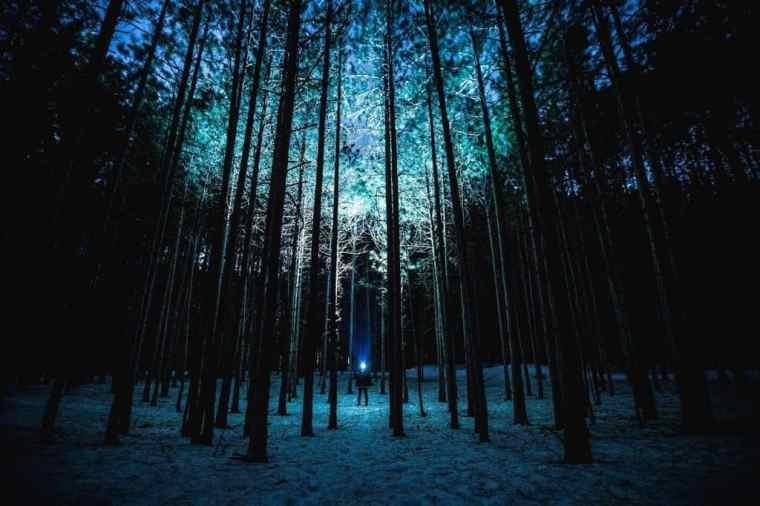 flashlight camping