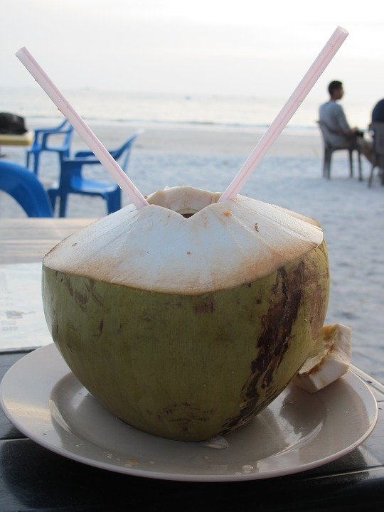 Coconut in Langkawi