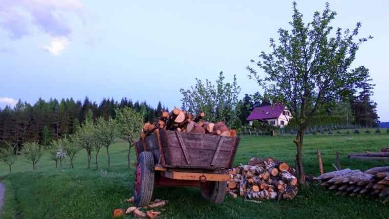 The Polish countryside – home, sweet home!