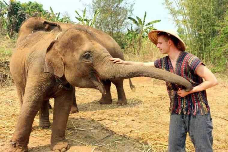 Cez petting an elephant