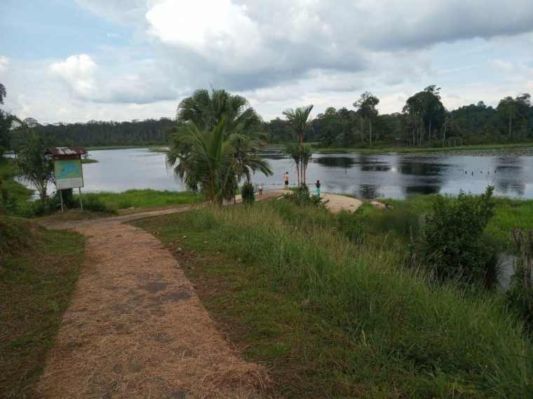 Tasek Merimbun lake Brunei