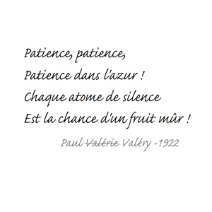 Patience_PV