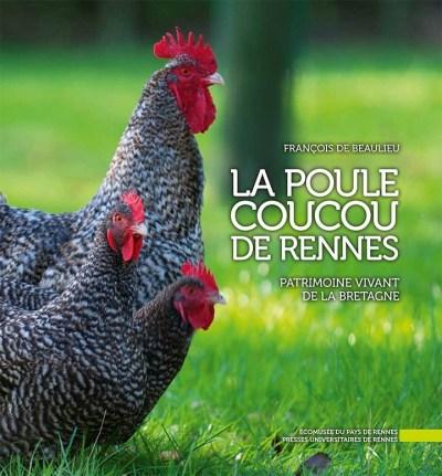 poule_coucou