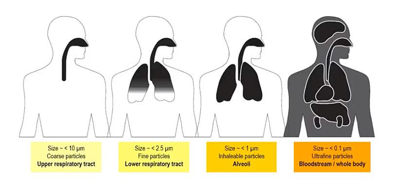 air human health