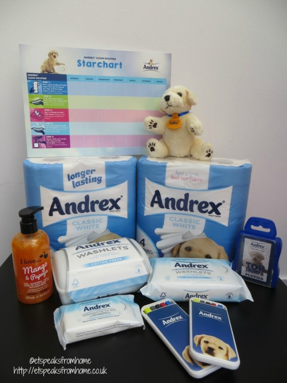 Andrex Clean Routine Guide