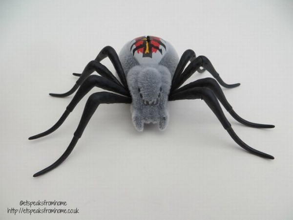 wild pets spider wolfgang
