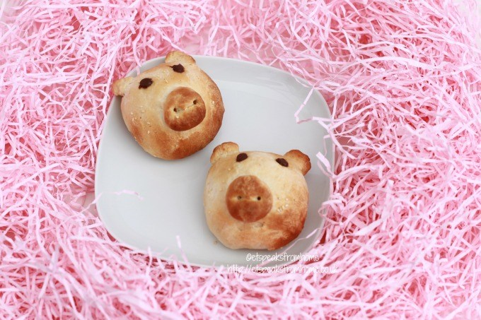 chinese sweet piggy bun pig