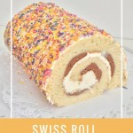 swiss roll with choclate strips and orange cream