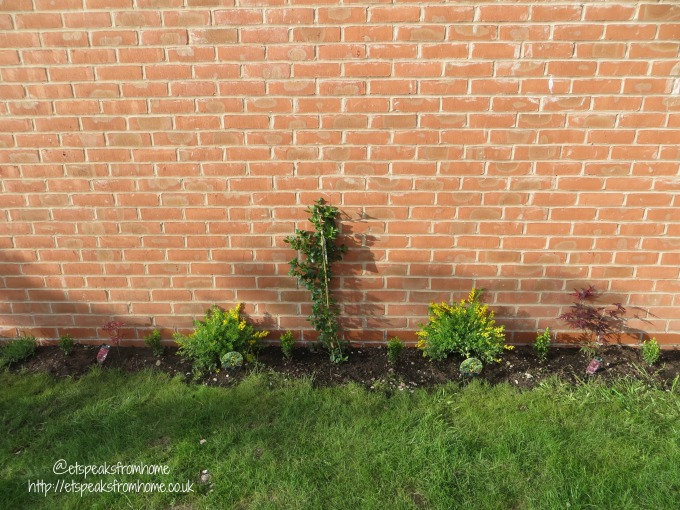 Add colour to my Garden – After Transformation garden