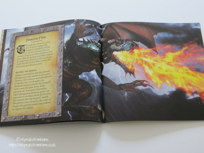 The Book of Dragons Review fire