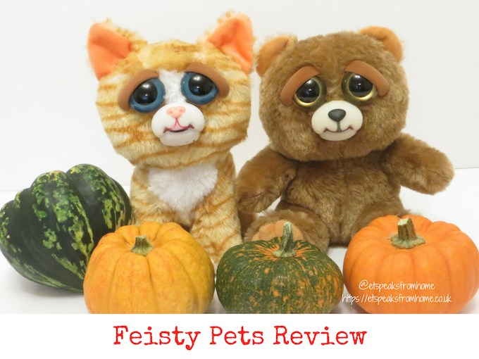 halloween with feisty pets