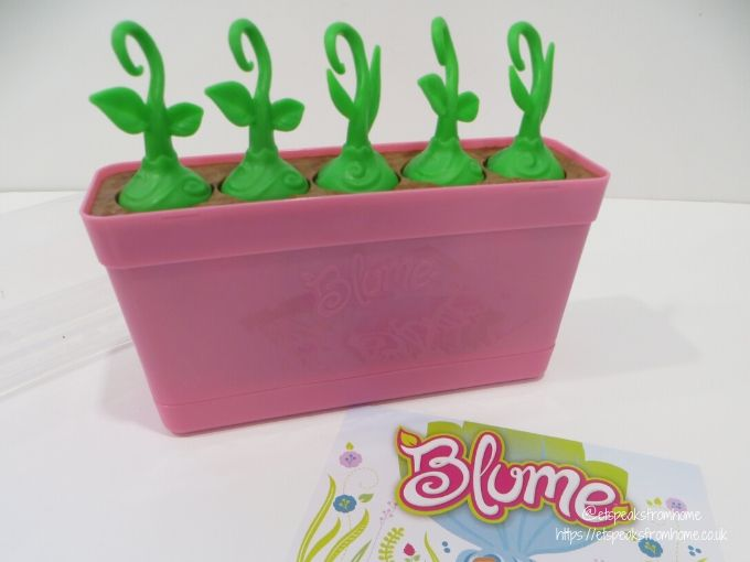 Blume Baby Pop with sprouts