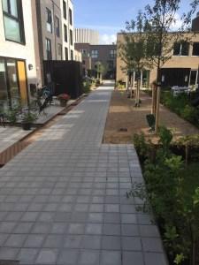anlæg af have i ørestanden - Byhusene