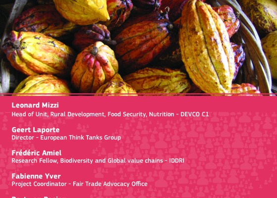 DEVCO Infopoint event - Sustainability in the cocoa sector