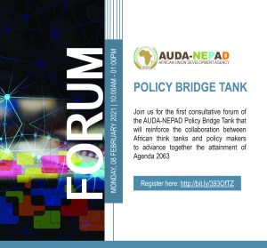 African Union Development Agency-NEPAD Policy Bridge Tank Forum