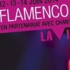 affiche Festival Flamenco 2014 - à la Villette