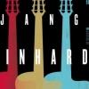 affiche Festival Django Reinhardt 2014