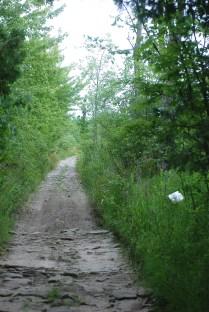s-track-scotch-line-trail-hiromi-suzukis-poem