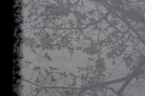 Ian Martin, reflections
