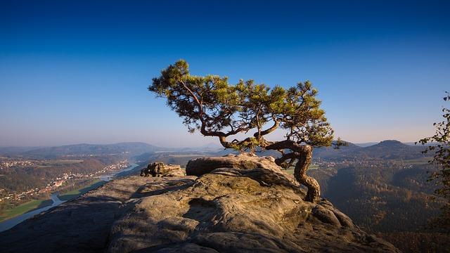 Das Elbsandsteingebirge bekommt eine Trekkingroute
