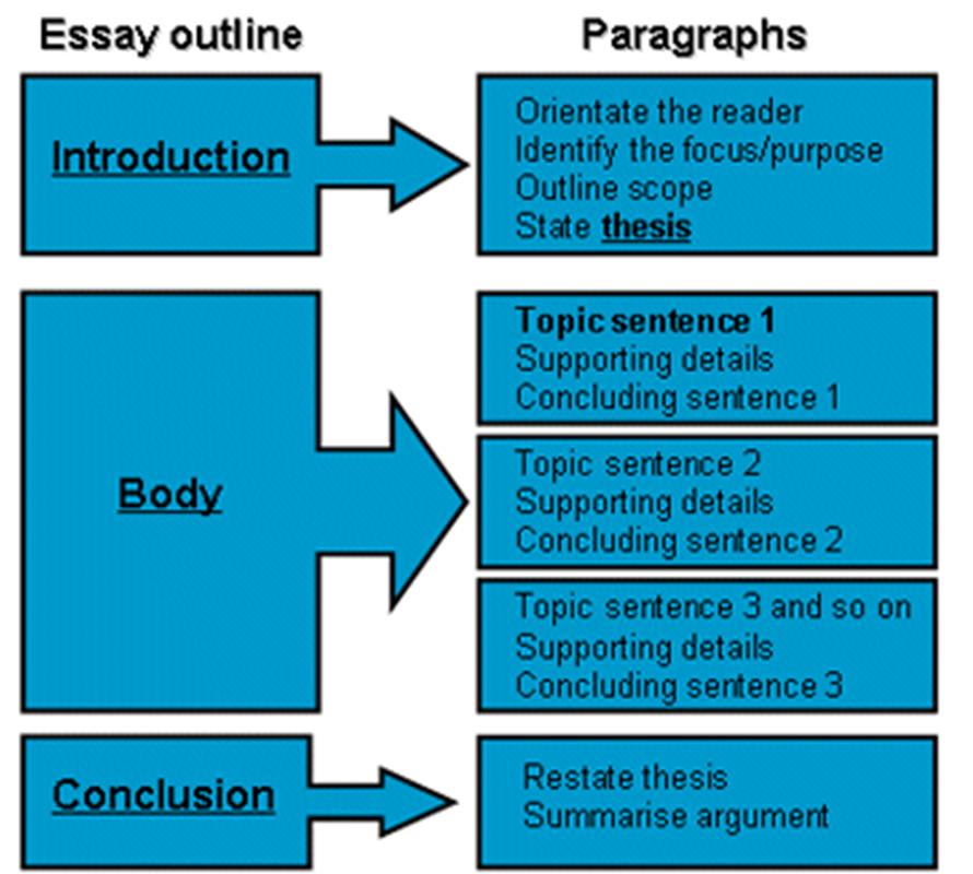 3 Paragraph Essay Format Examples