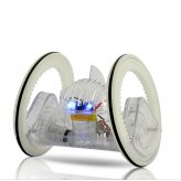 iRobot - iPhone/iPad/iPod Touch Controlled Two-Wheel Robot