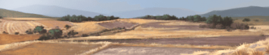 Drylands terrain