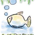 fish-1264243_1280