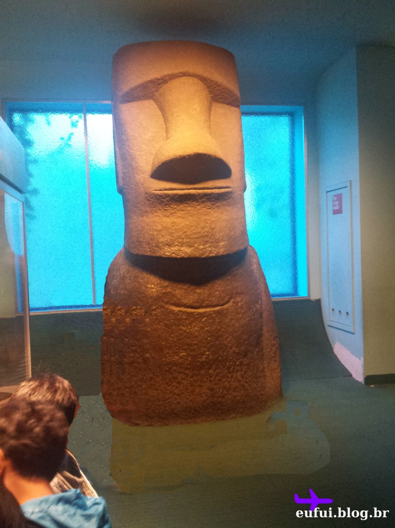 new_york-museu_de_historia_natural-gumgum