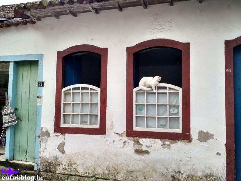 paraty rio de janeiro gato janela