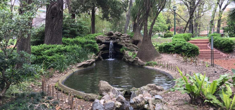 jardim botanico de buenos aires argentina fonte